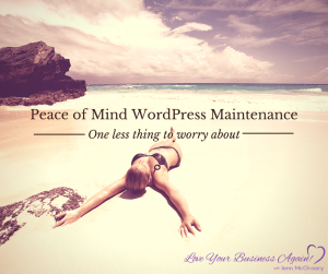 peace of mind WordPress care plans
